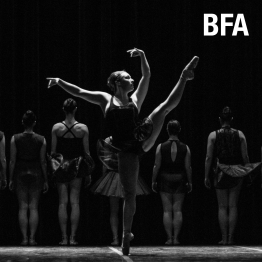 BFA Program